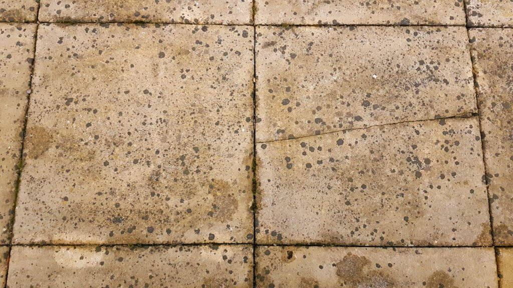 Lichen Black Spots Splodges Ruining Your Patio Or Driveway